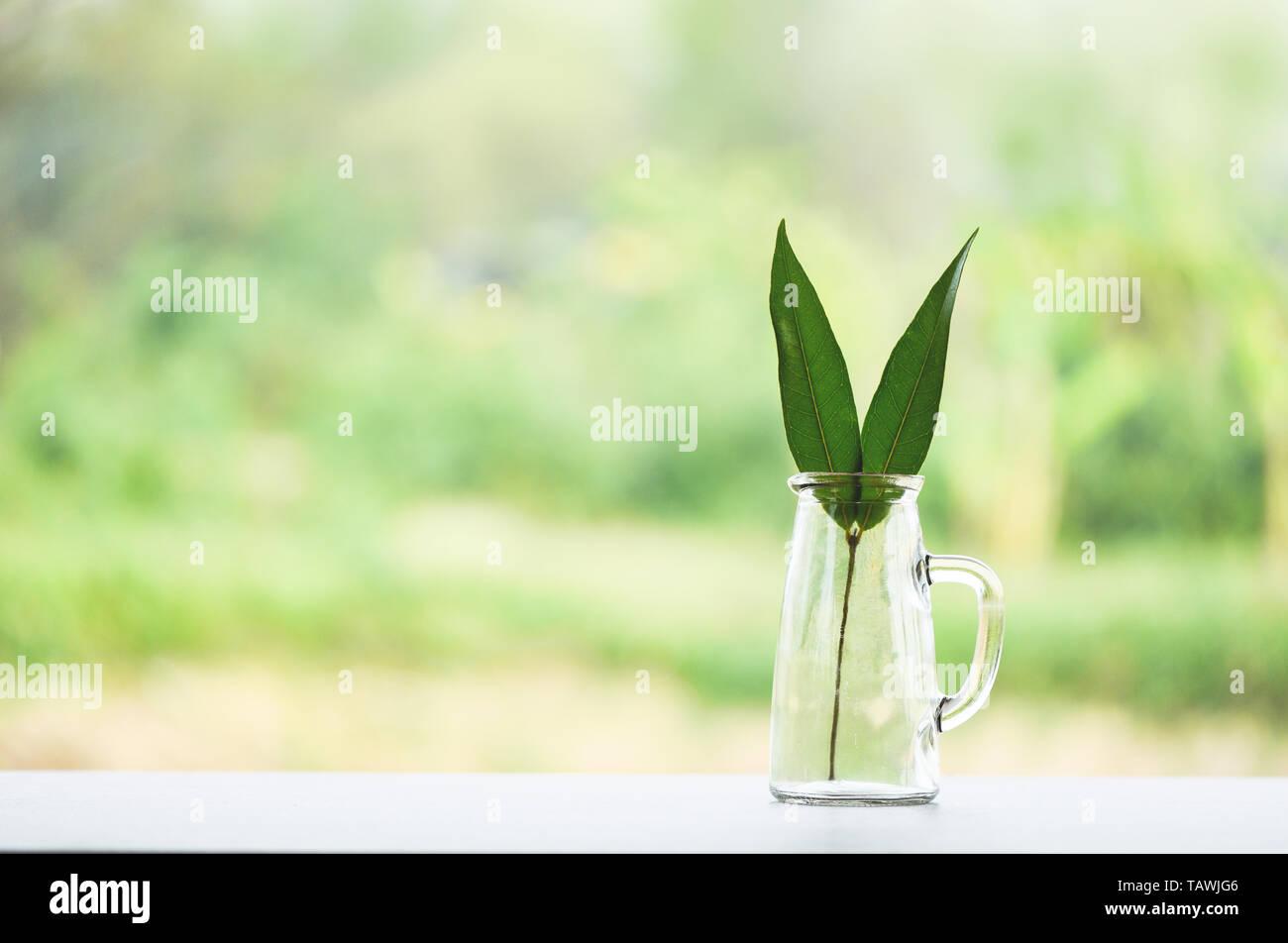 Zero Waste Use Less Plastic Concept Eco Green Leaf In