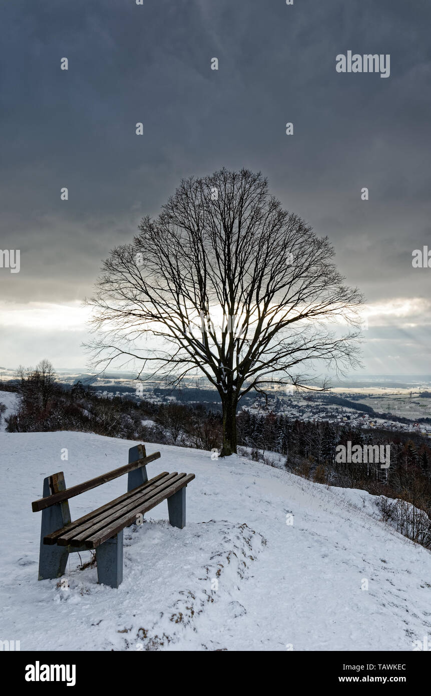 Bench and tree in snowed in winter landscape on mountain top in Bavaria, Germany under thick partial cloud cover - Stock Image