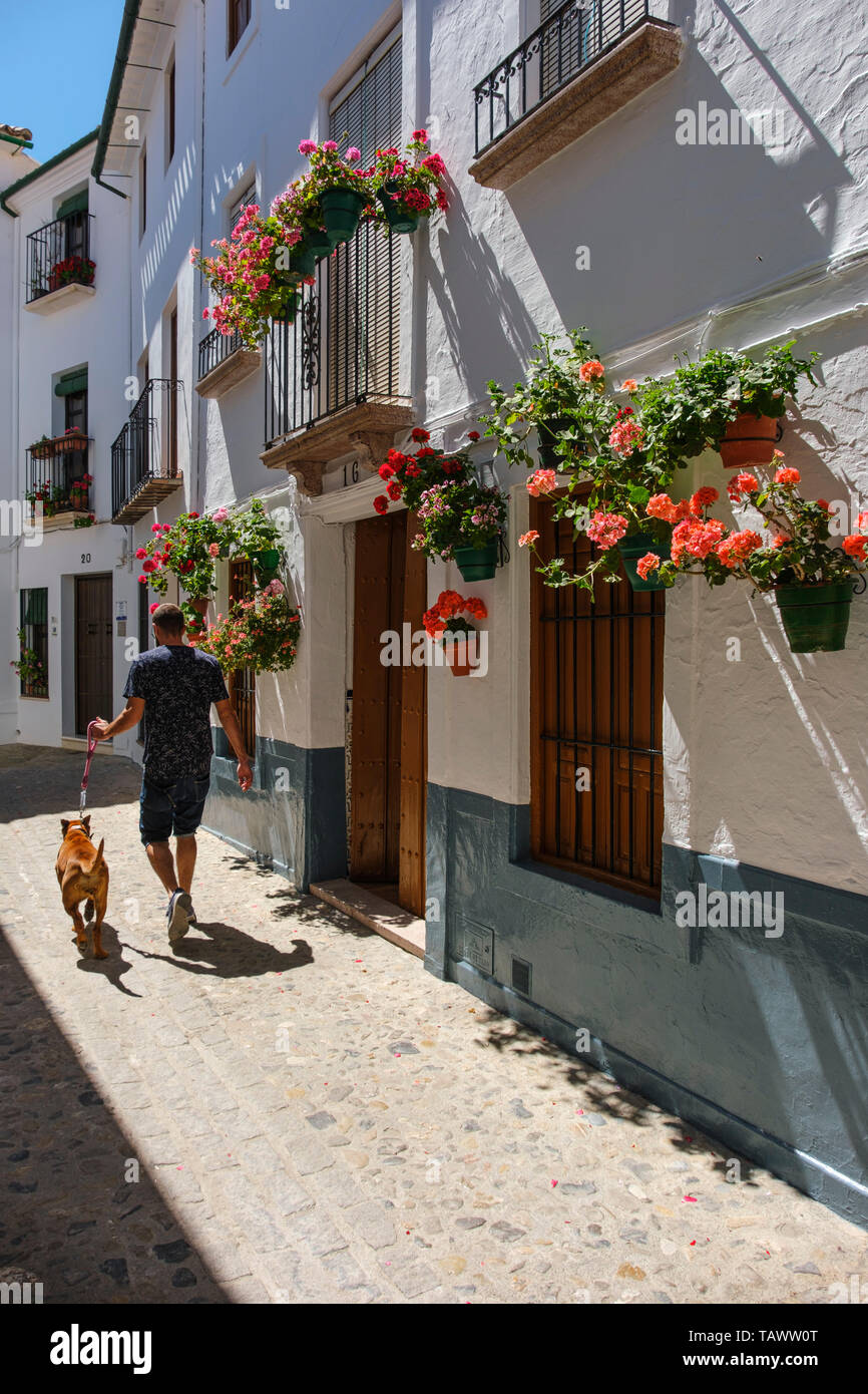 Typical street with flowers in Barrio de la Villa, Priego de Cordoba. Cordoba province, southern Andalusia. Spain Europe Stock Photo