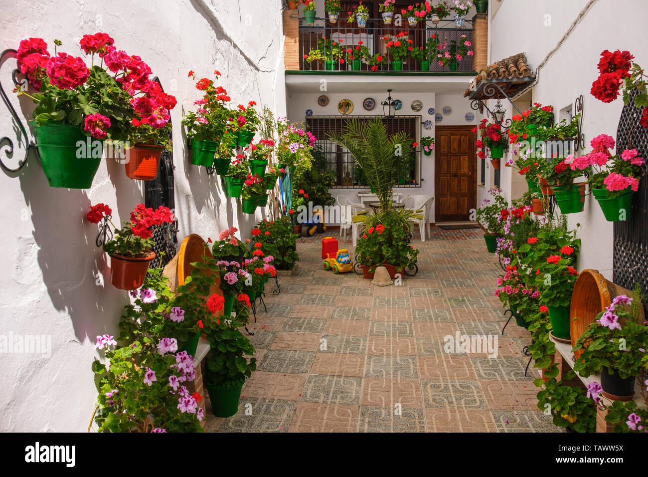 Typical street with flowers in Barrio de la Villa, Priego de Cordoba. Cordoba province, southern Andalusia. Spain Europe Stock Photo