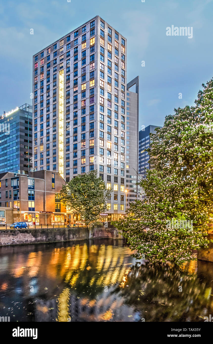 498ef933b3a Rotterdam, The Netherlands, May 15, 2019: a large chestnut tree and the Witte  Keizer residential tower reflect in the water of Steigersgracht canal in