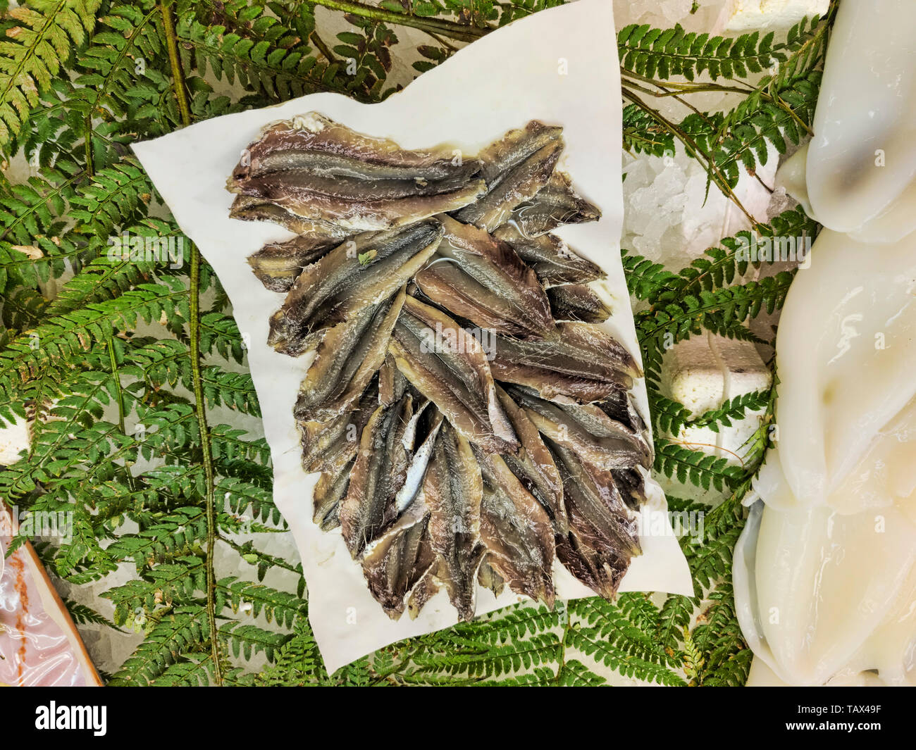 Many raw eviscerated anchovies exposed to the market to be used for typical Italian recipes - Stock Image
