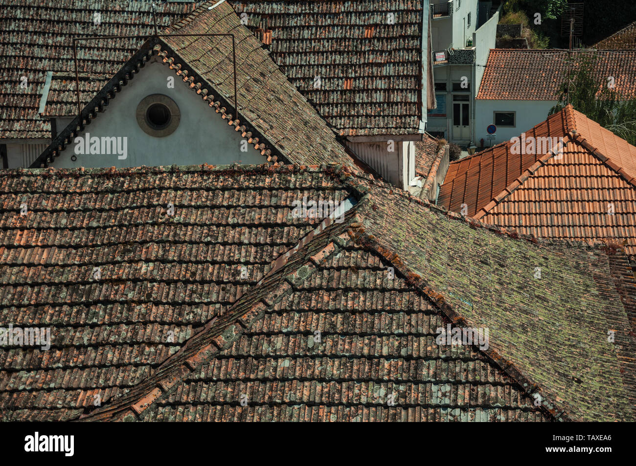 Several house roofs covered with moss and lichens in a sunny day at Seia. A nice village of Portugal also known for its delicious cheese. - Stock Image