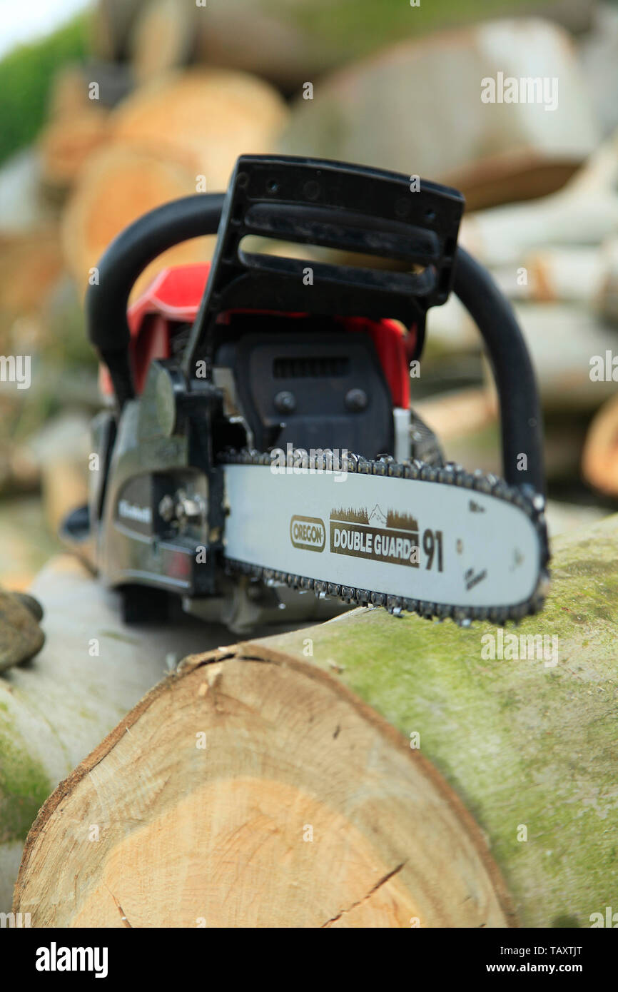Chain saw and wood - Stock Image