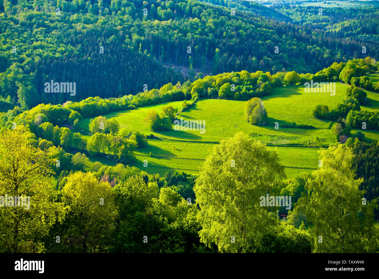 Green idyll in the Rhoen in the heart of Bavaria, Germany - Stock Image