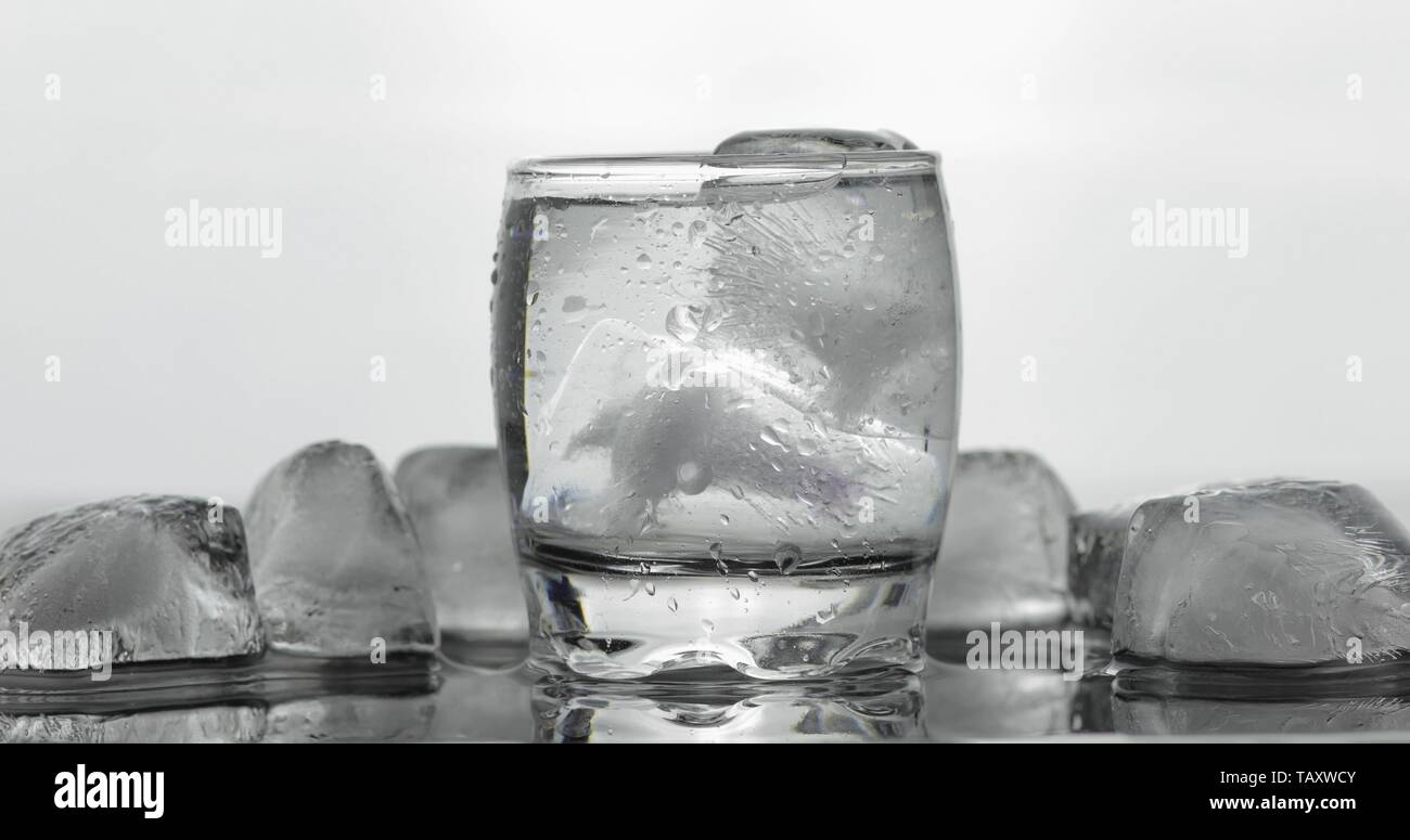 Shot of vodka in glass. White background with ice cubes. Alcohol drink vodka tequila - Stock Image