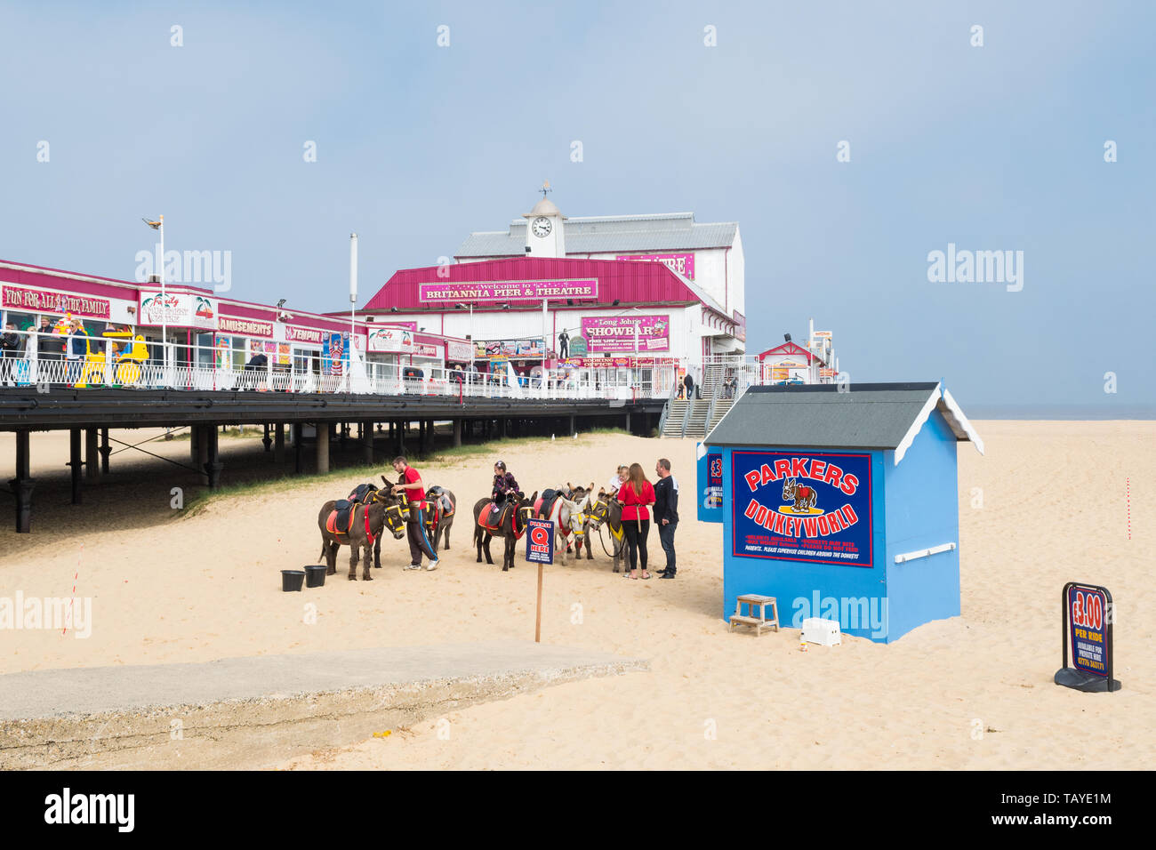Great Yarmouth beach pier and donkeys - a traditional british seaside scene - Great Yarmouth, England, UK - Stock Image
