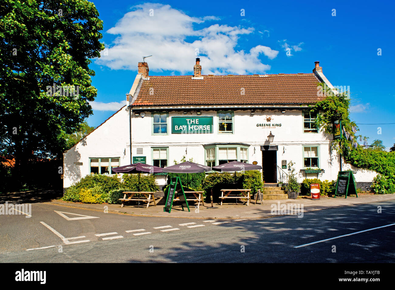 The Bay Horse, Green Hammerton, North Yorkshire, England - Stock Image