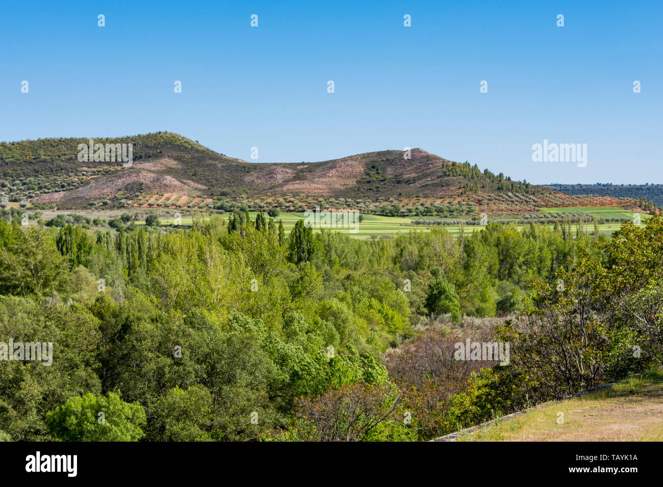 landscape of carved fields and olive groves in the sierra de guadarrama. madrid spain Stock Photo