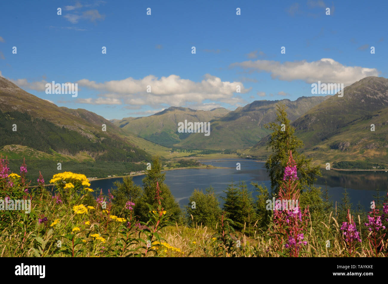 View of Loch Duich and the Five Sisters of Kintail mountain range, Ross and Cromarty, Scotland Stock Photo