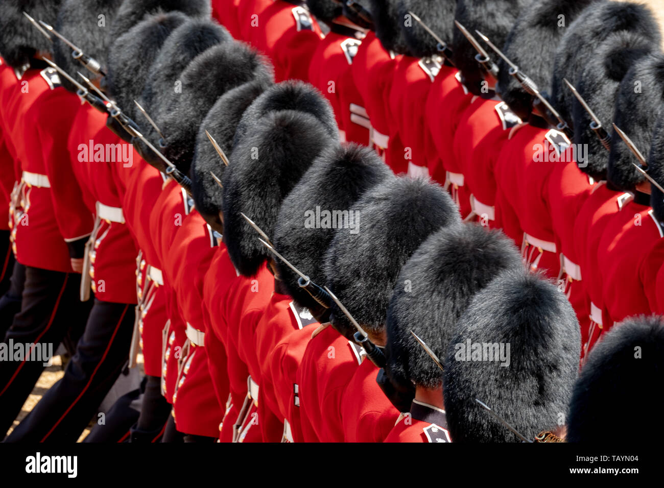 Trooping the Colour parade in Westminster, London UK, showing the Household Division Royal Guards doing military drills with great precision. - Stock Image