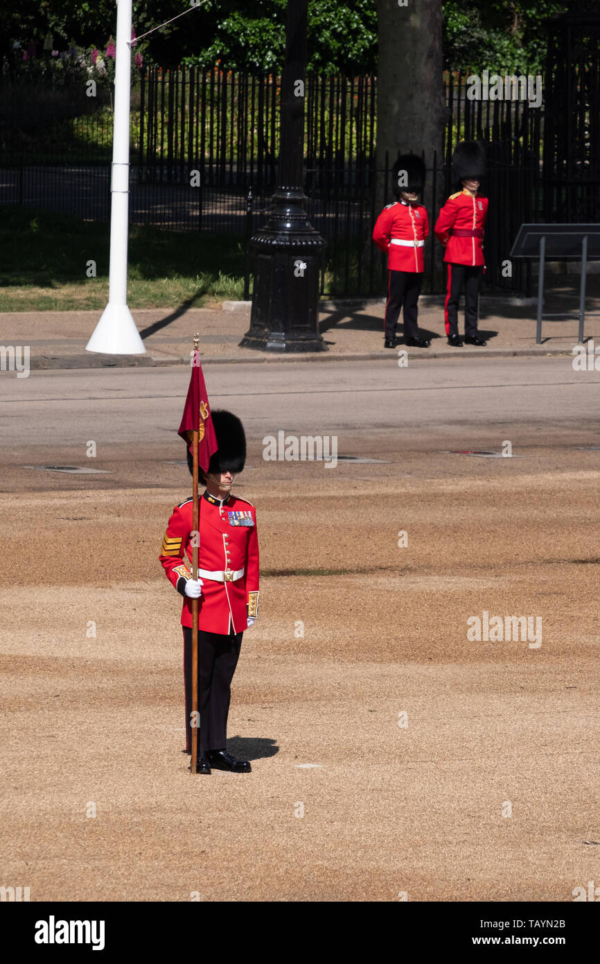 Lone guard at the Trooping the Colour, military parade at Horse Guards, London UK. Guard wears iconic black and red uniform and bearskin hat. - Stock Image