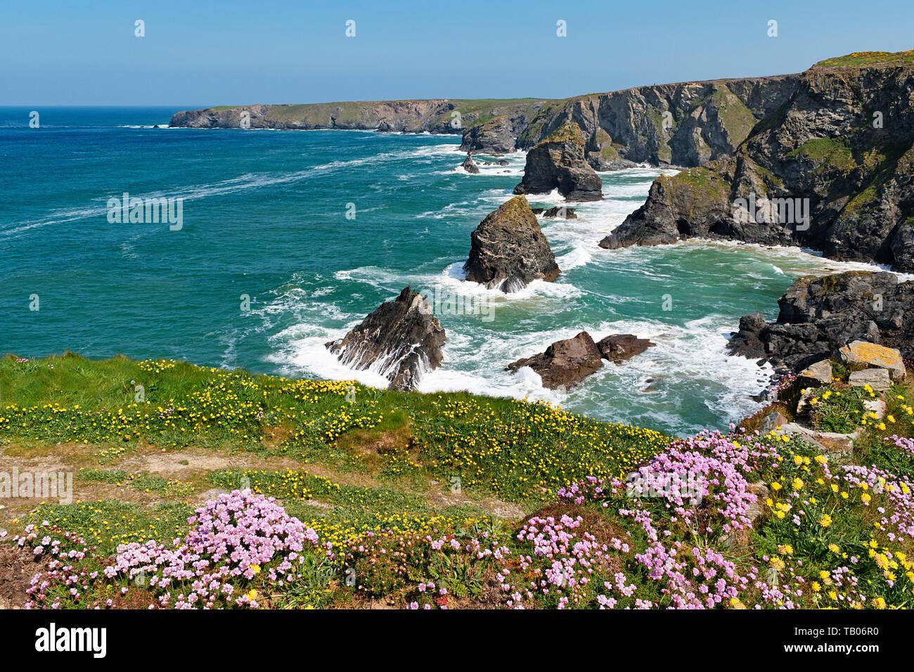 bedruthan, north coast, cornwall, england, britain, uk - Stock Image