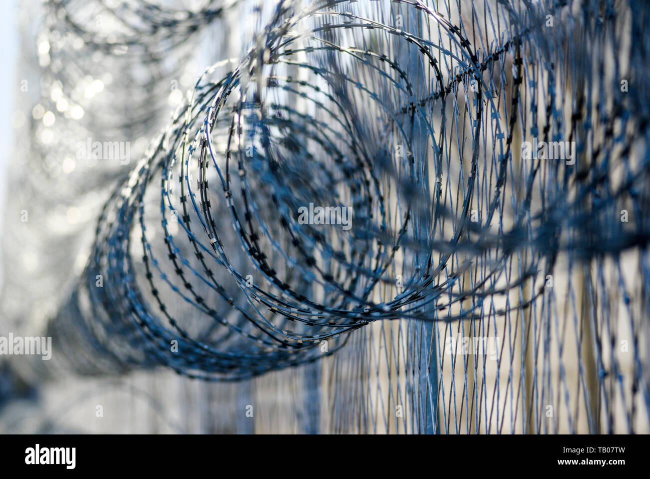 Barbed wire in prison, protecting prisoners from escaping. Stock Photo