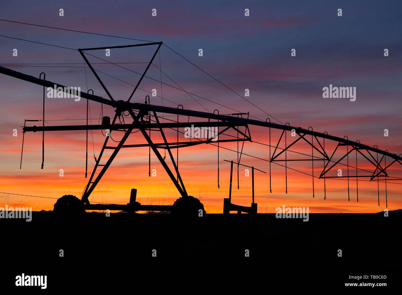 Agriculture Montana Farm Stock Photos & Agriculture Montana