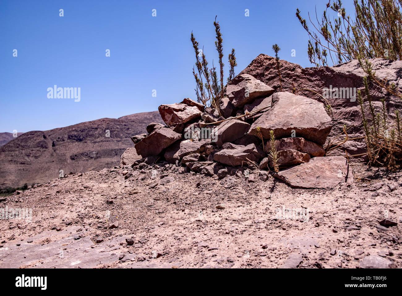 Wandern im Elqui Tal, Chile, Südamerika - Stock Image
