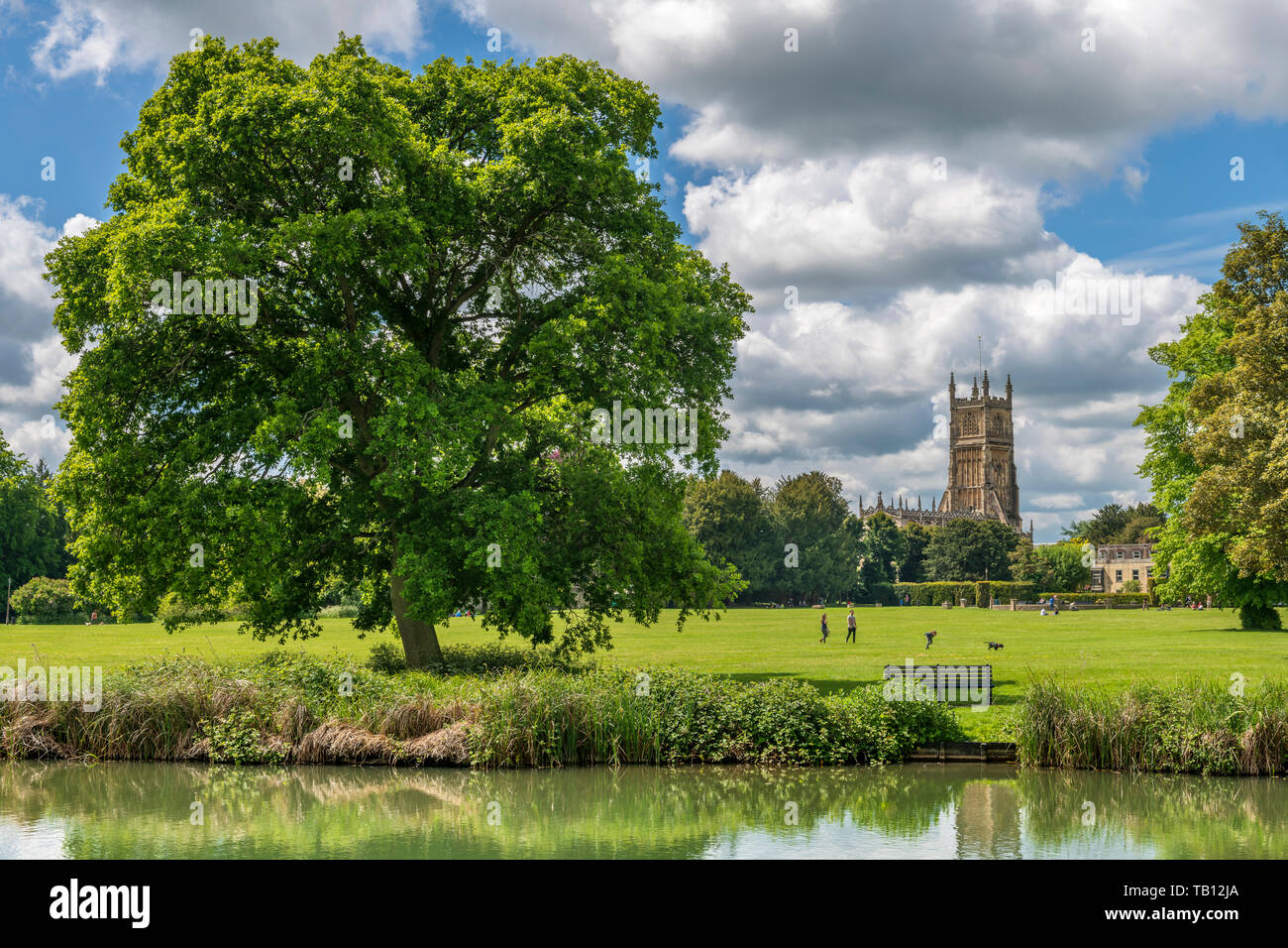The Abbey Grounds is a fantastic open green space in the centre of Cirencester in Gloucestershire. The grounds contain the site of St Mary's Abbey whi - Stock Image