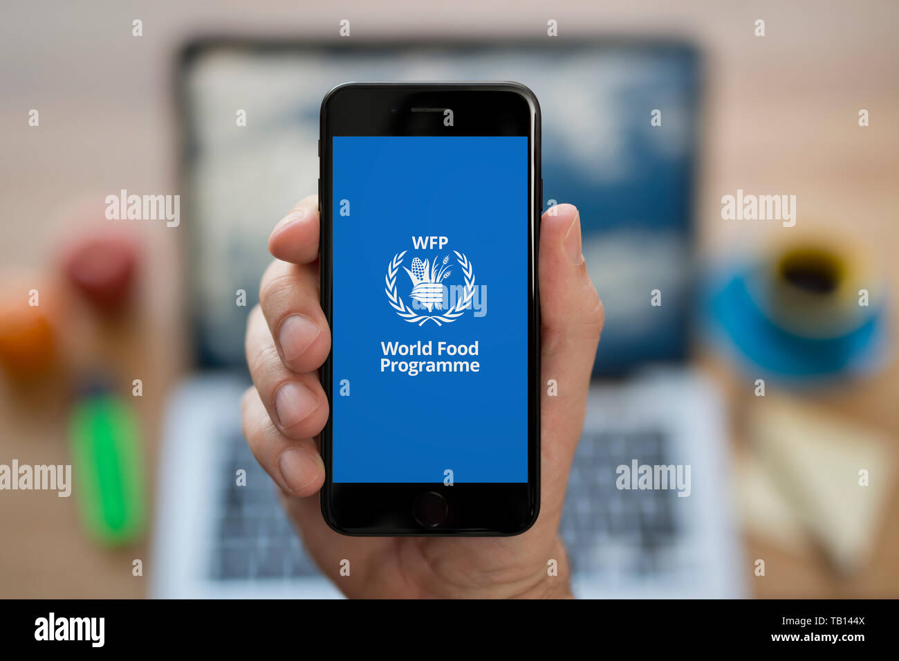 A man looks at his iPhone which displays the World Food Programme logo (Editorial use only). Stock Photo