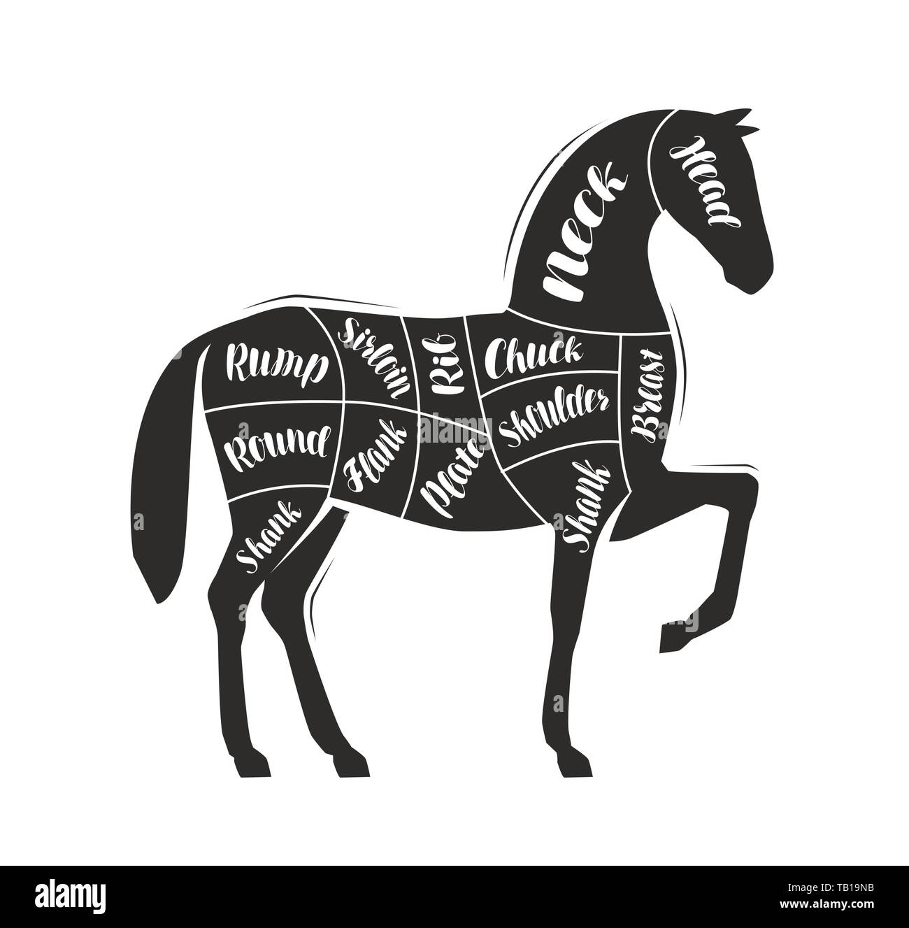 Diagram guide for cutting meat, butcher shop. Horse vector - Stock Image