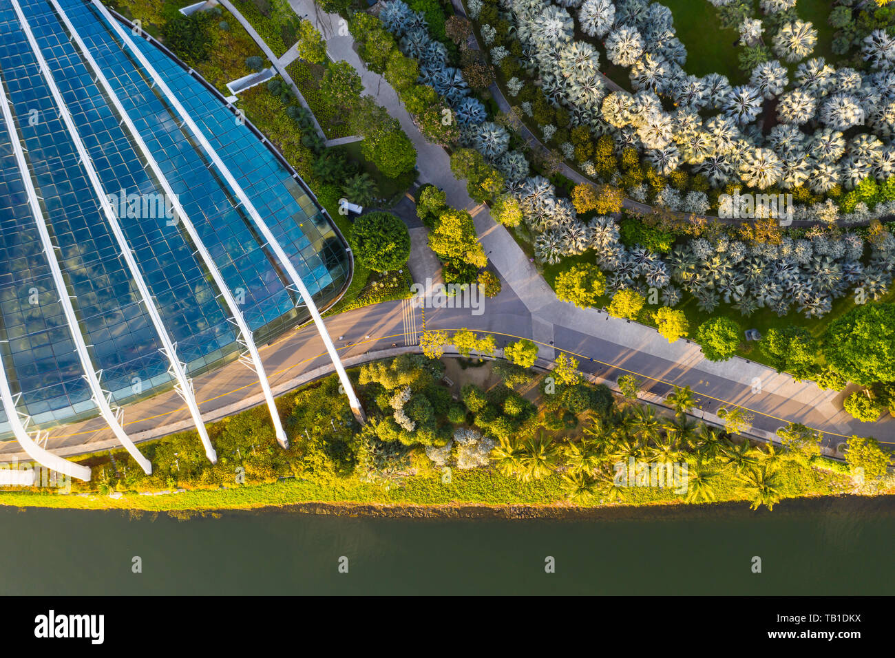 Slow travel at Gardens by the Bay - aerial perspective in the morning, Singapore - Stock Image
