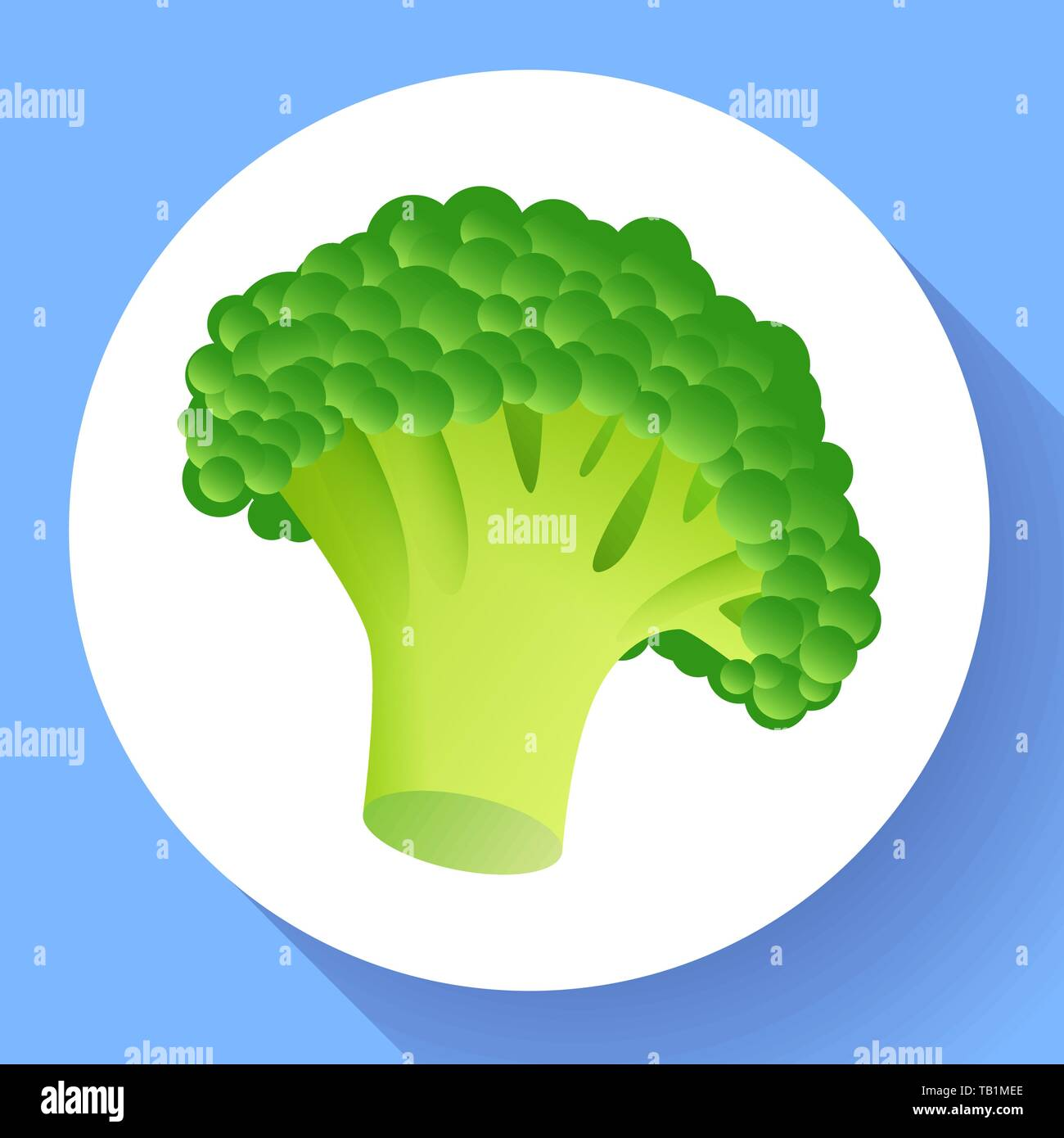 fresh broccoli icon realistic illustration of fresh broccoli vector icon for web design stock vector image art alamy https www alamy com fresh broccoli icon realistic illustration of fresh broccoli vector icon for web design image247744406 html