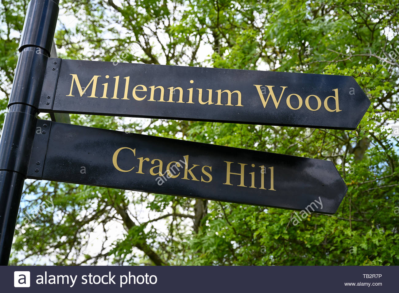 Modern looking black and gold sign on a path in the English countryside. - Stock Image