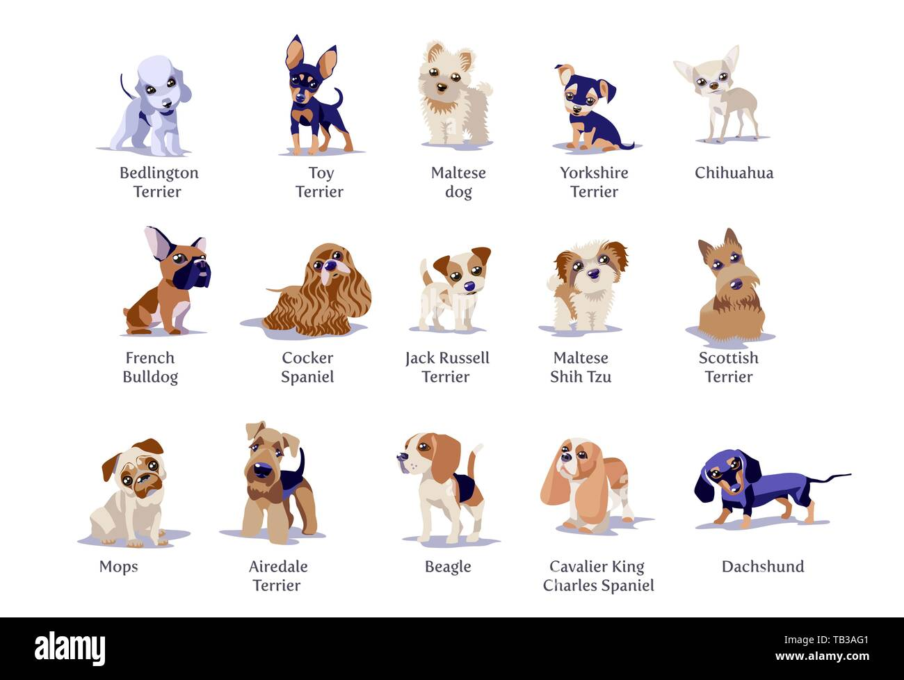 Vector Illustration Of Dogs Puppies Different Breeds Isolated Stock Vector Image Art Alamy