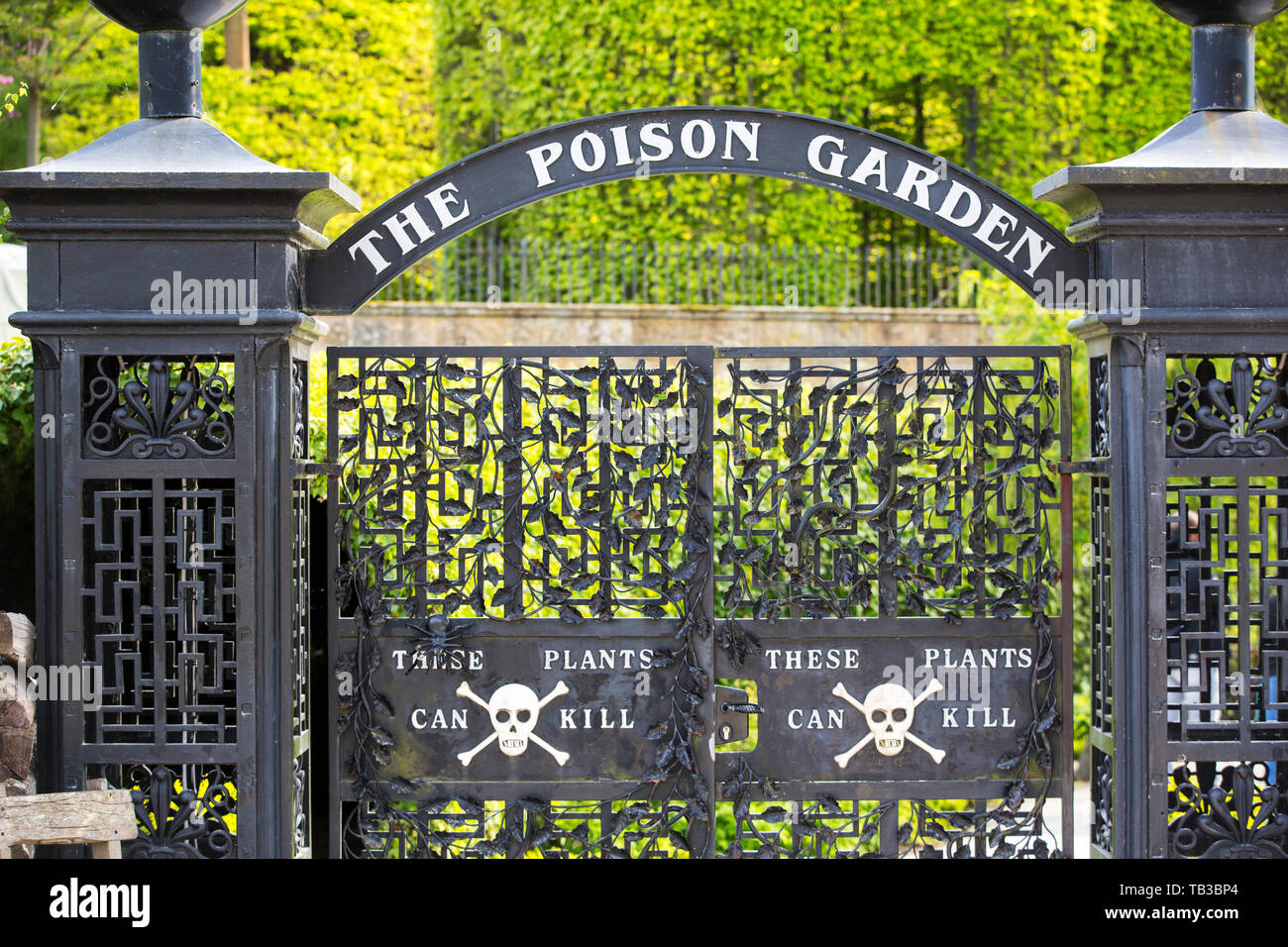 The Poison Garden At Alnwick Castle Gardens Northumberland Uk
