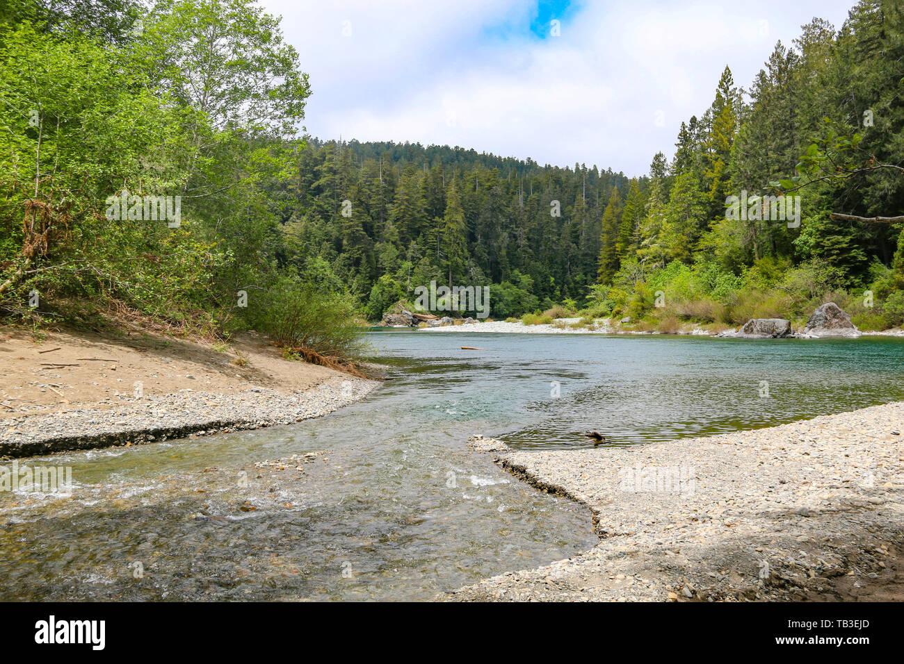 Smith River, Stout Memorial Grove, California - Stock Image