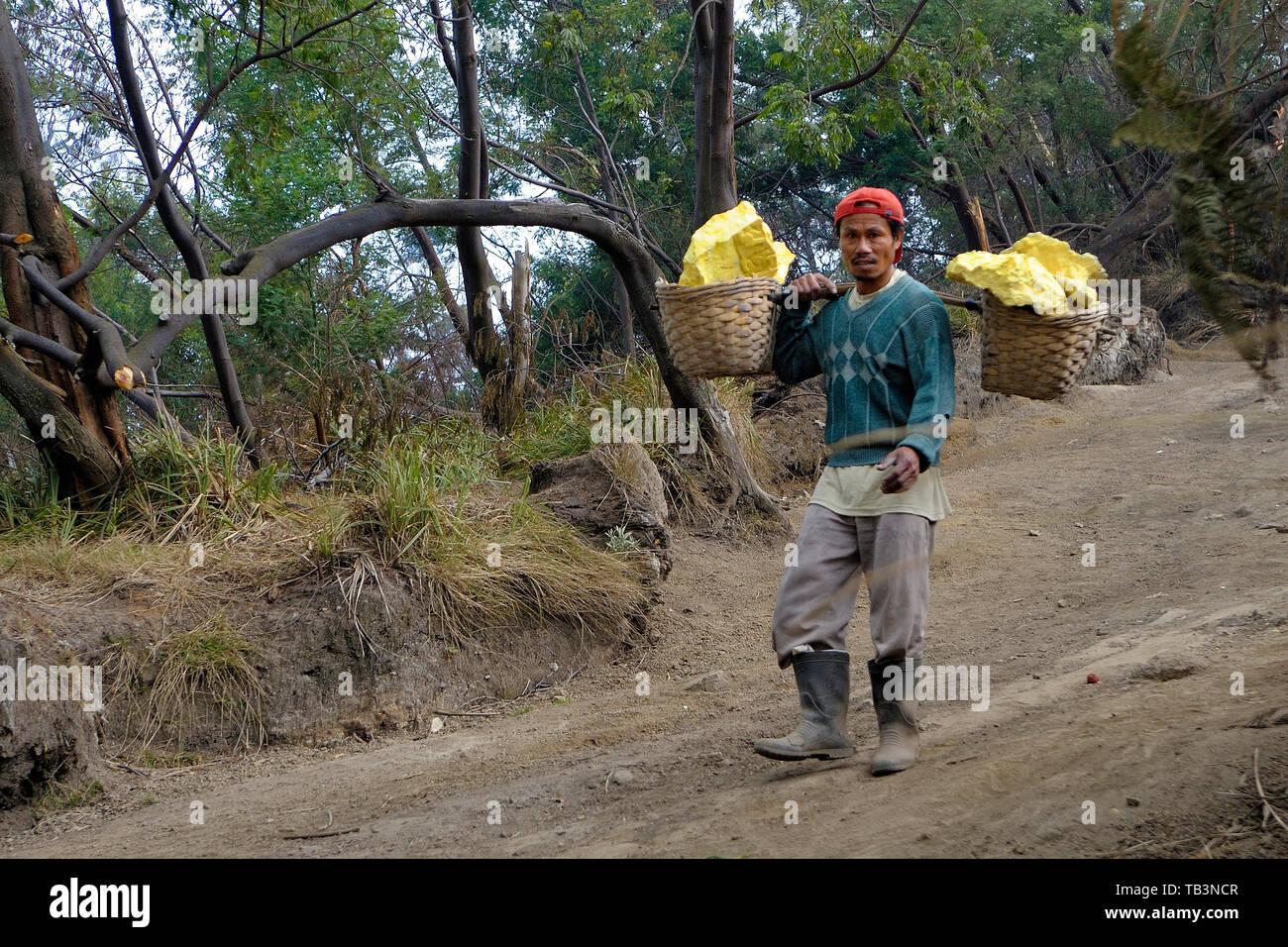 Arbeiter tragen schwere Schwefelsteine in Körben vom Vulkankomplex zur Basisstation, Kratersee Kawah eingebettet im Ijen-Krater, Kawah Ijen, Besuki, I - Stock Image