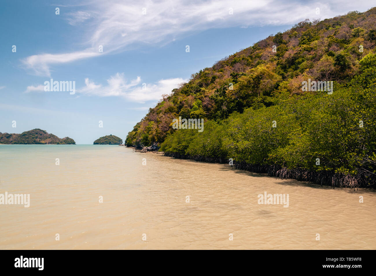 Coastline and mangrove forest in Talet bay at Nakhon Si Thammarat province of Thailand. - Stock Image