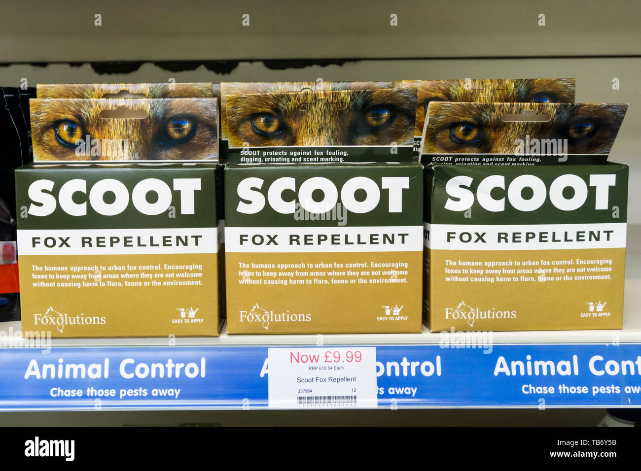 Scoot is a product intended to deter urban foxes from gardens. - Stock Image
