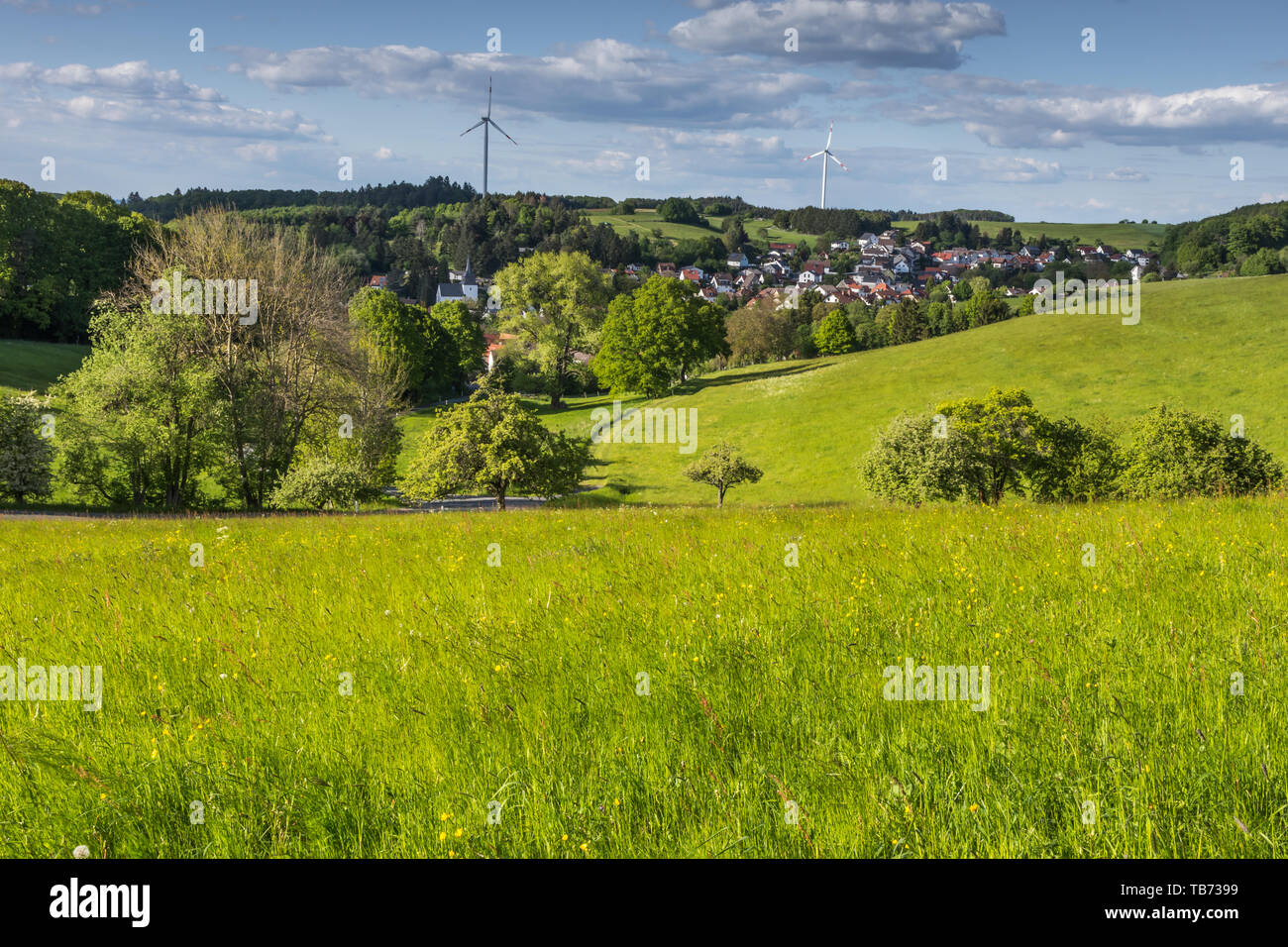 Green landscape in beautiful Odenwald, Hesse, Germany Stock Photo