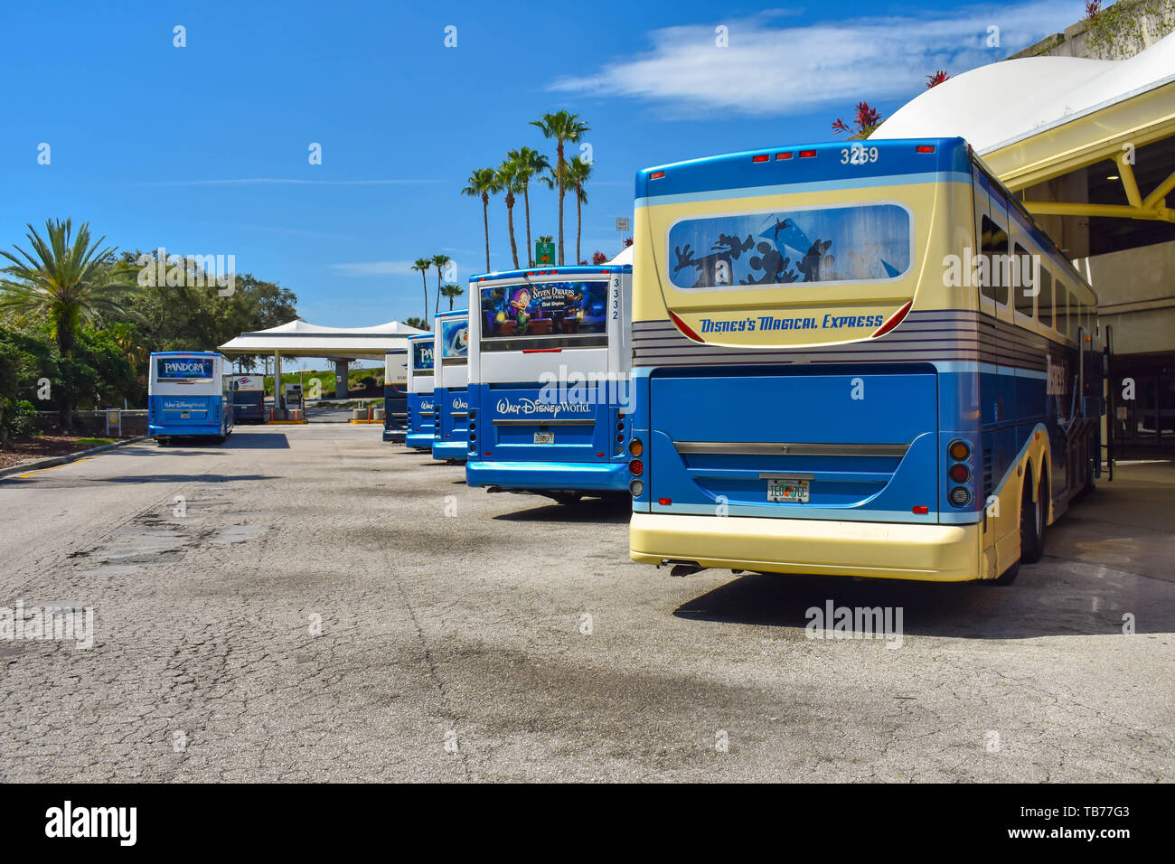 Orlando Florida March 01 2019 Disney Buses Lined Up In Terminal A Transportation Area At Orlando International Airport Stock Photo Alamy