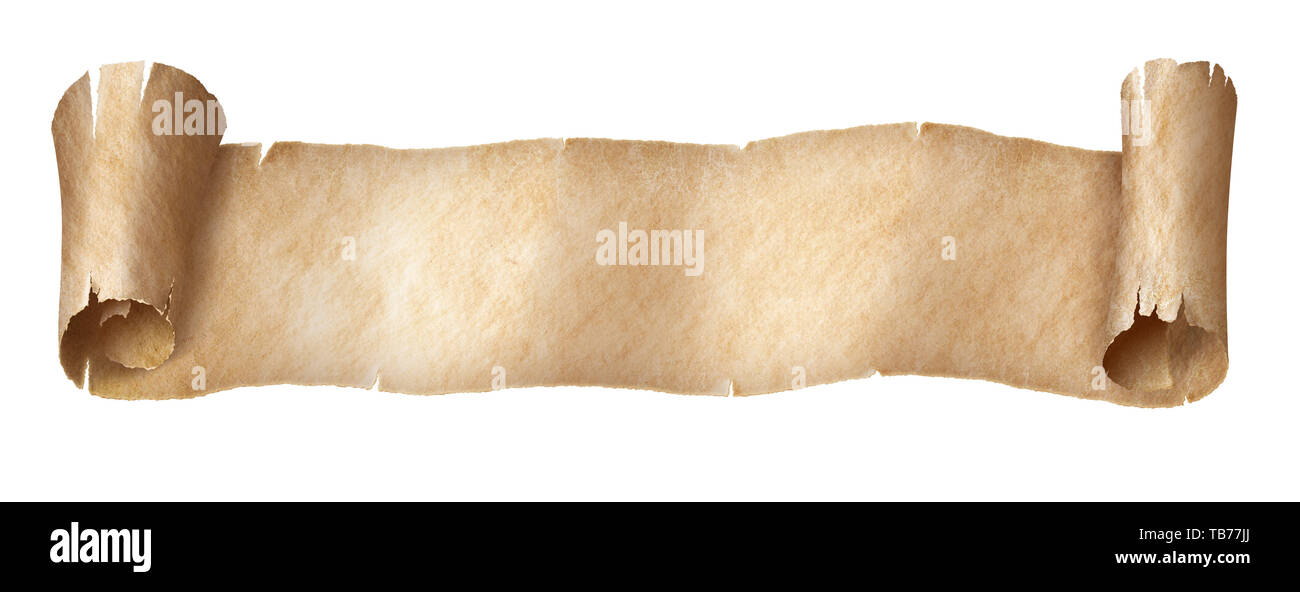Vintage paper or parchment narrow long scroll isolated on white - Stock Image