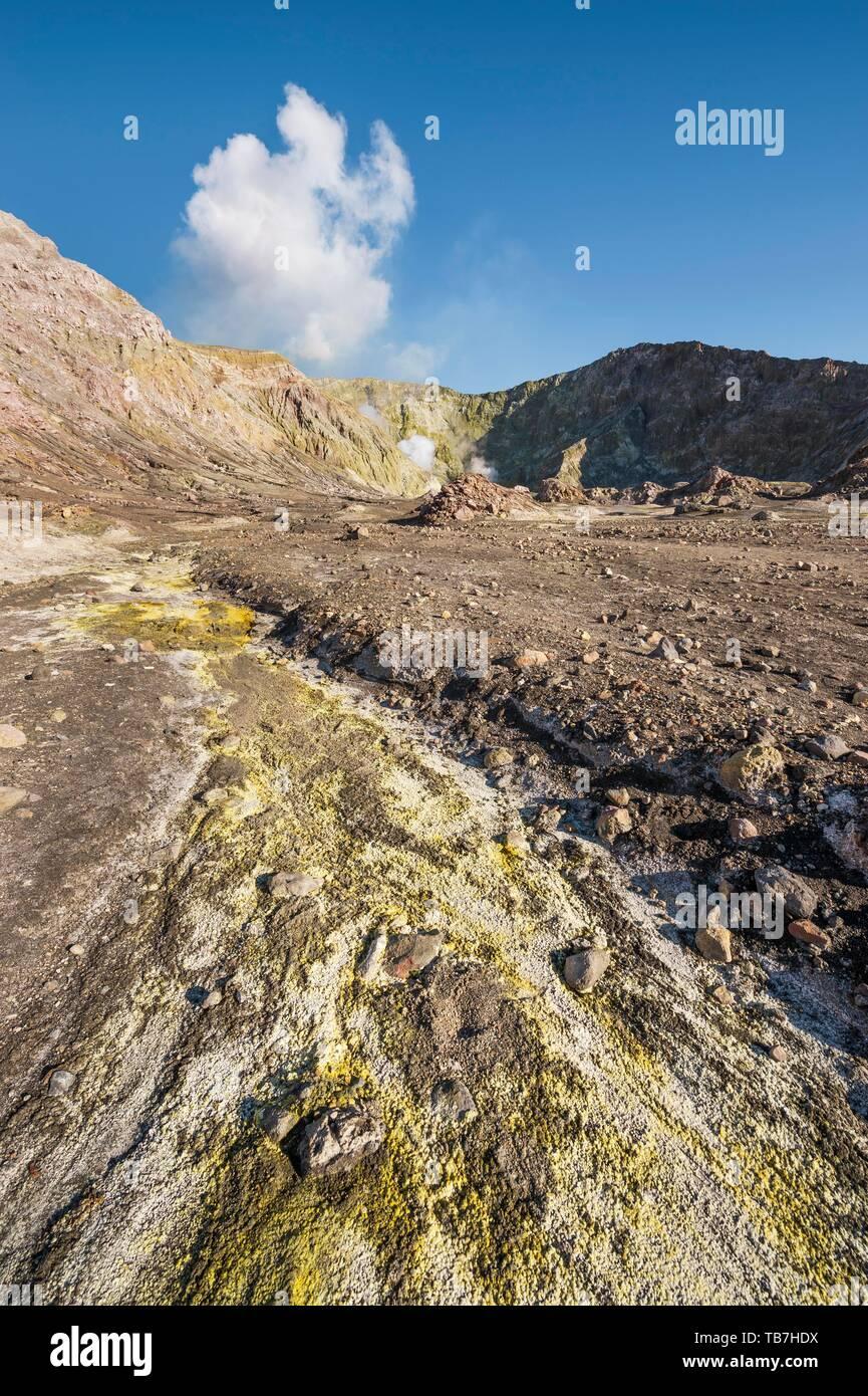 Yellow sulphur and fumaroles on the volcanic island of White Island, Whakaari, Bay of Plenty, North Island, New Zealand - Stock Image