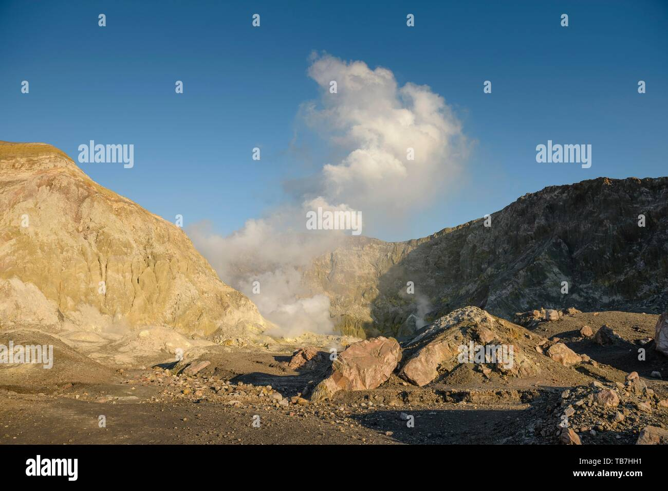 Rock formations and fumaroles on the volcanic island of White Island with rising steam from the crater, Whakaari, Volcanic Island, Bay of Plenty - Stock Image