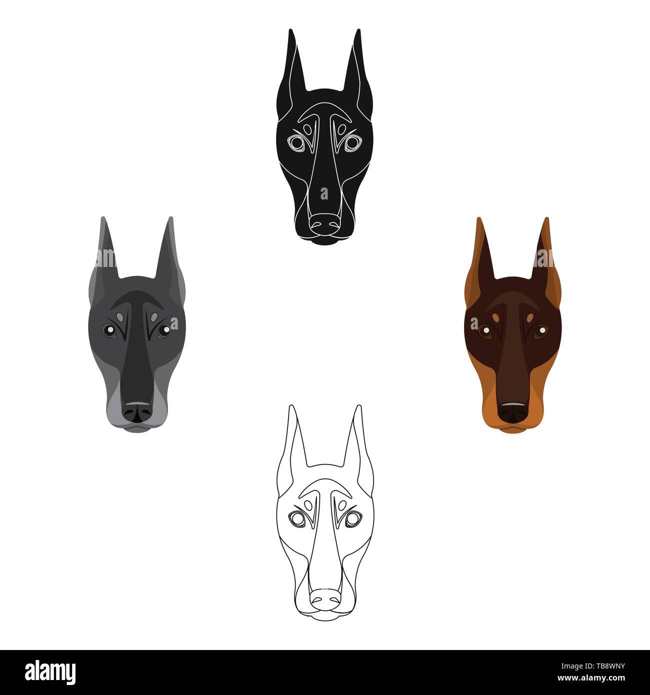 Dog breed, Doberman.Dobermann s muzzle single icon in cartoon,black style vector symbol stock illustration . - Stock Vector