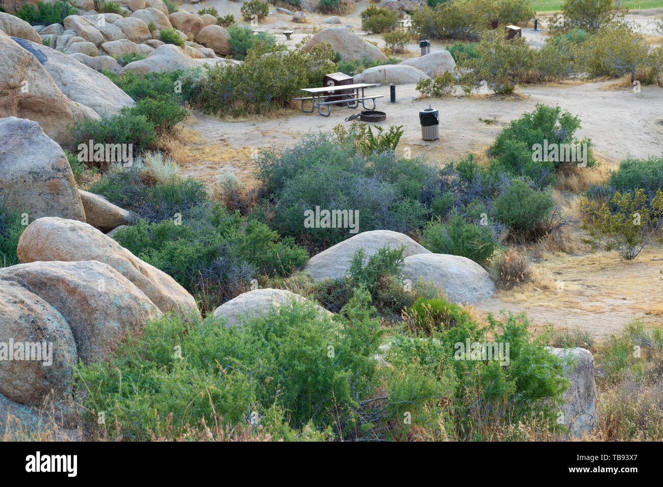 Day use picnic area at Horsemen's Center Park in the Town of Apple Valley, California, in the Mojave Desert. Stock Photo