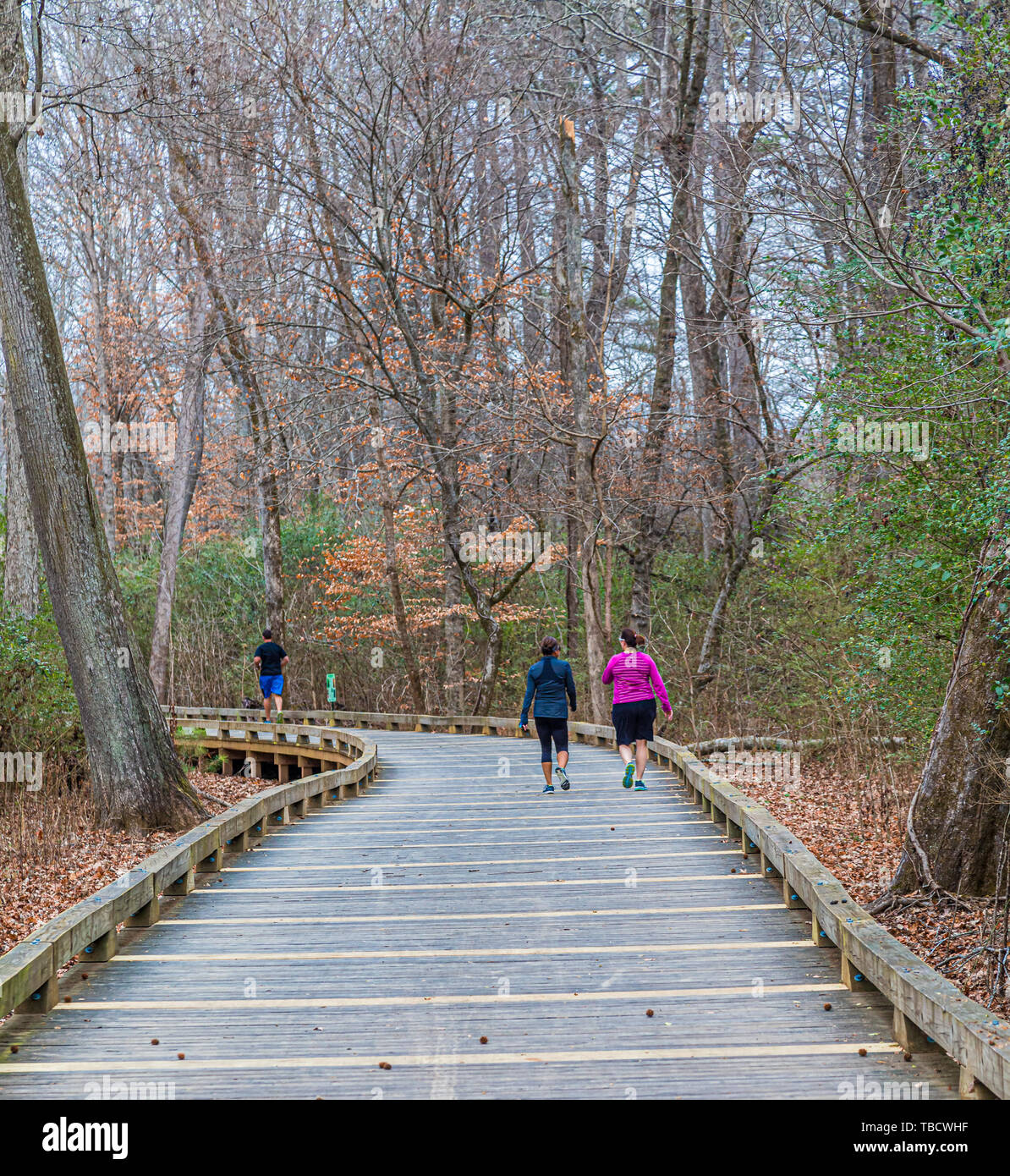 Walkers and Runners on a walking, running, biking and fistness trail through woodlands and wetlands in Georgia - Stock Image