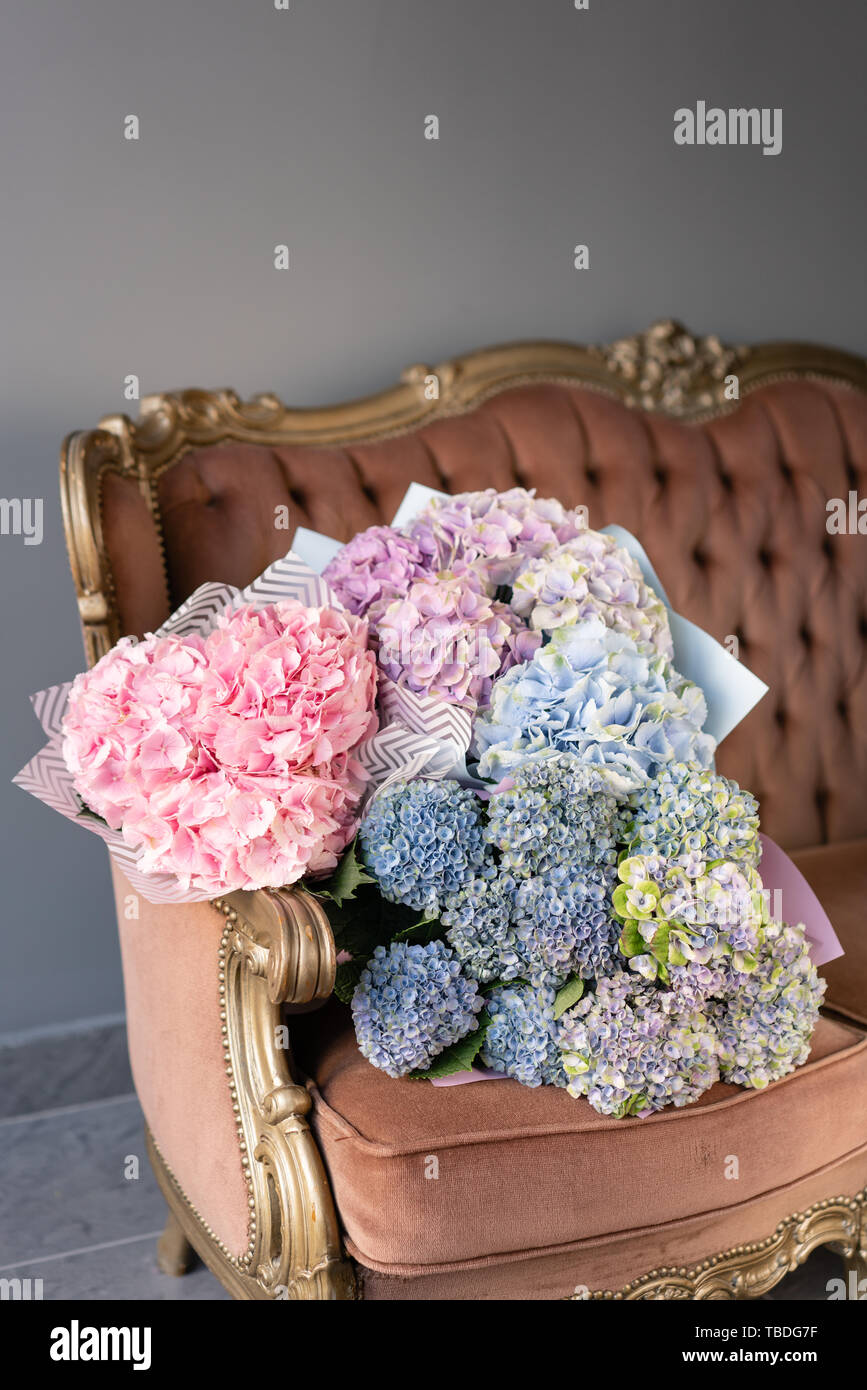 Bouquets Of Hydrangeas Lying On Vintage Sofa Small Beautiful Bouquet Of Hydrangea Flowers Floral Shop Concept Beautiful Fresh Cut Bouquet Flowers Stock Photo Alamy