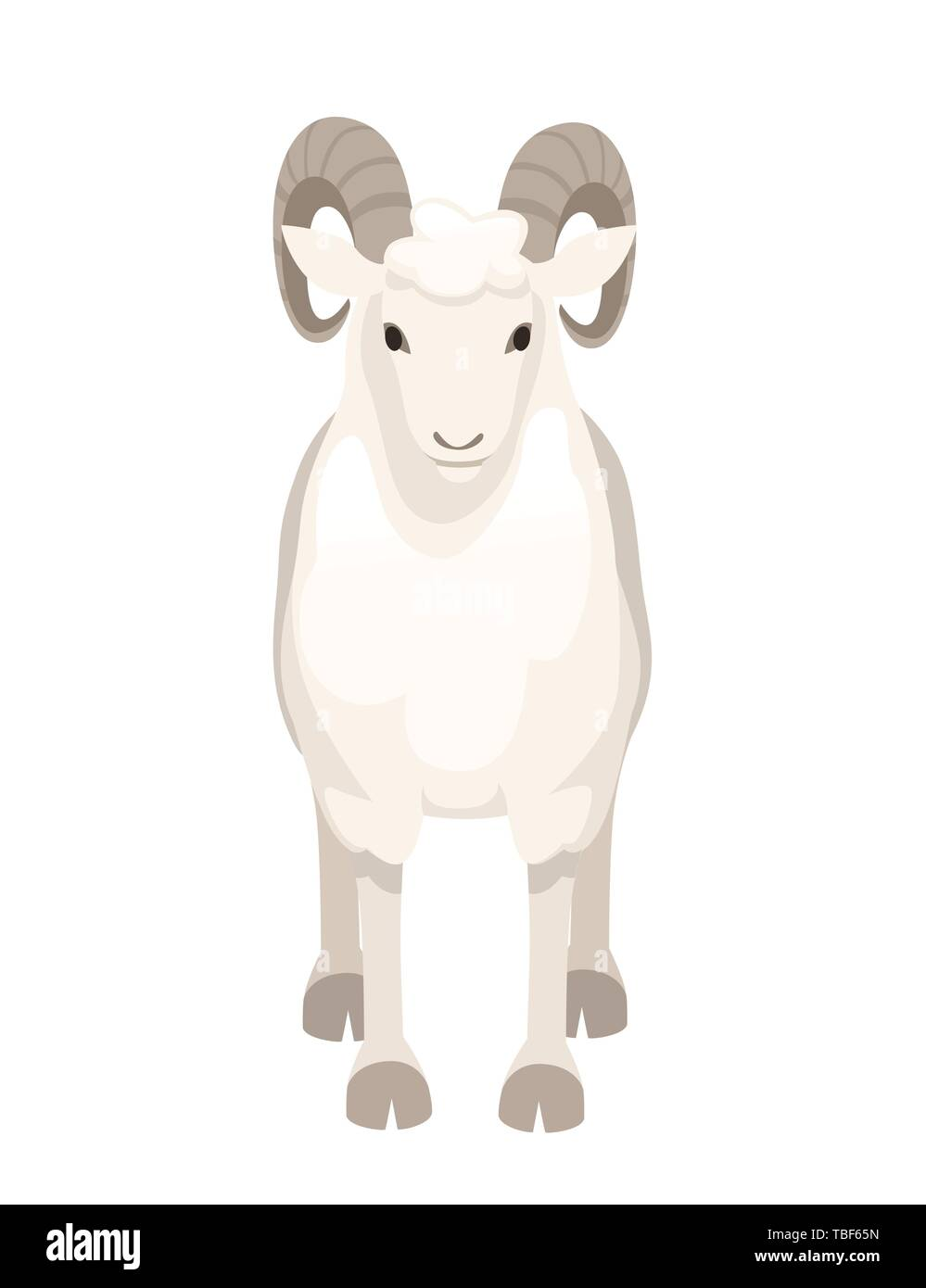 5b2a04f4c White horned mountain ram sheep cartoon character design flat vector animal  illustration isolated on white background