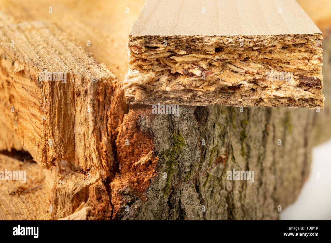 Particleboard on the trunk of raw wood  Materials for