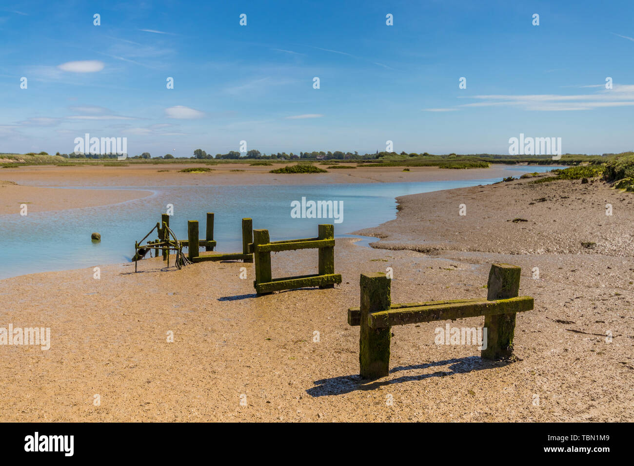 Remains of an old wooden pier at Pagham Harbour, West Sussex, UK - Stock Image