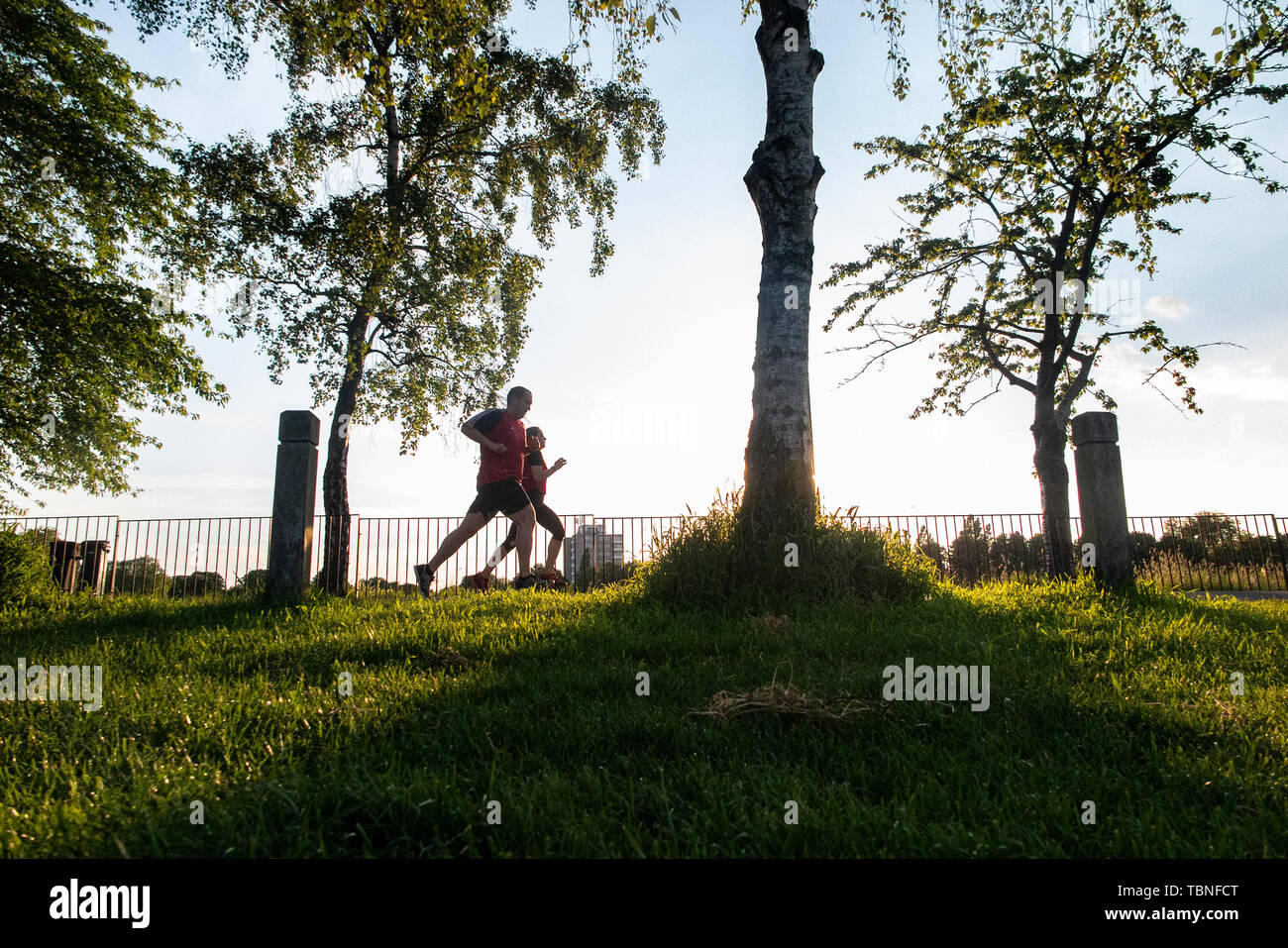 A couple running in a London park on a summer's evening - Stock Image