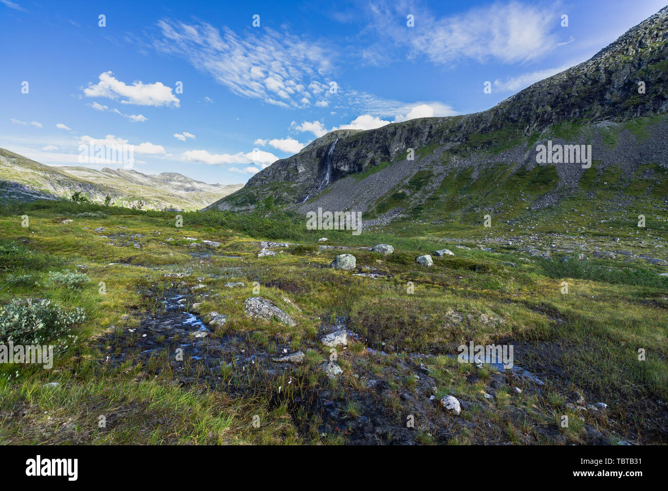Landscape and nature at the upper part of the Valldalen Valley towards Trollstigen, Sunnmore, More og Romsdal, Norway - Stock Image
