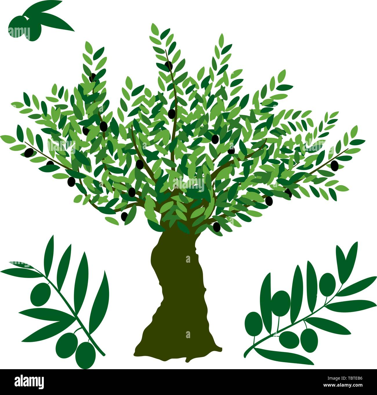 Vector illustration. Olive tree symbol, with detailed branch and fruits. - Stock Vector