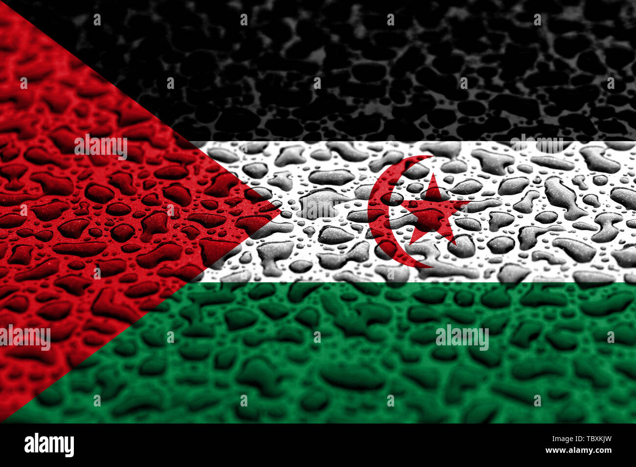 National flag of Sahrawi made of water drops. Background forecast concept. - Stock Image