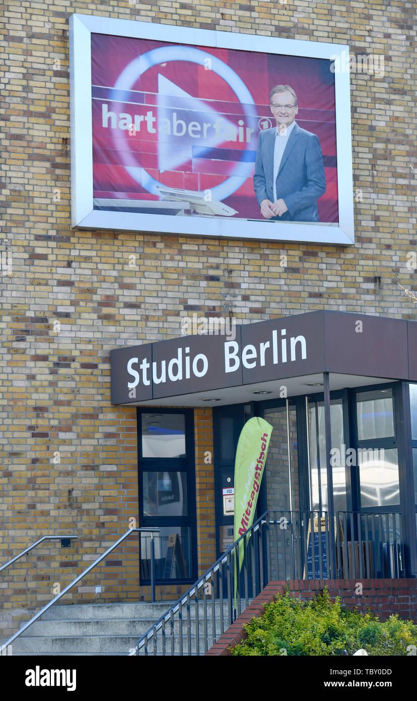 Studio Berlin, in the studio, eagle court, Treptow-Köpenick, Berlin, Germany, Am Studio, Adlershof, Deutschland - Stock Image