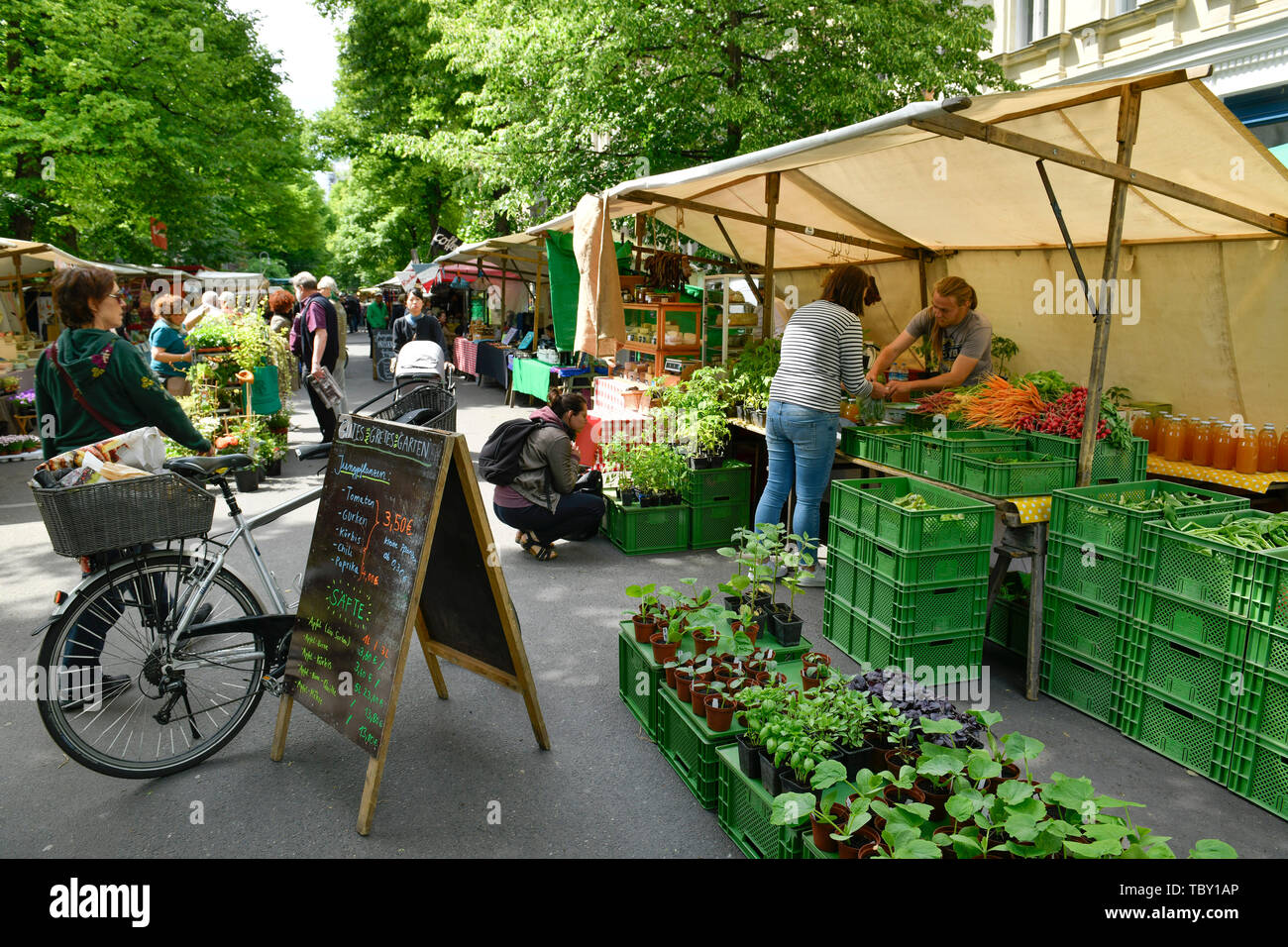 Ecological market, place Kollwitz, Prenzlauer mountain, Pankow, Berlin, Germany, Ökomarkt, Kollwitzplatz, Prenzlauer Berg, Deutschland - Stock Image